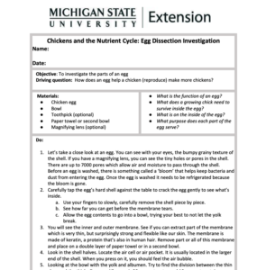 Activity journal for MSU Tollgate Farm egg dissection activity